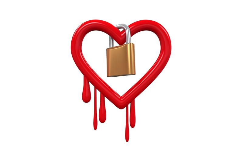 heartbleed vulnerability assessment