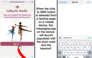 click-to-sms-landing-page-to-messaging3-1024x842